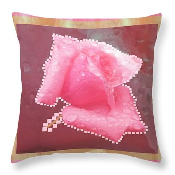 Rose Flower Petal Art Texture N Color Tones Navinjoshi  Rights Managed Images Graphic Design Is A St Throw Pillow
