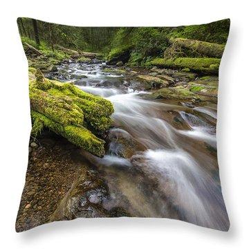 Rush Rush Throw Pillow by Jon Glaser
