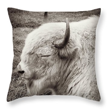 Sacred Buffalo Throw Pillow