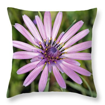 Throw Pillow featuring the photograph Salsify Flower by George Atsametakis
