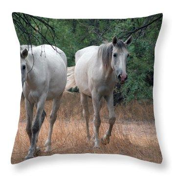 Salt River Wild Horse Throw Pillow