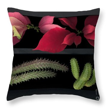 2 Seasons Throw Pillow