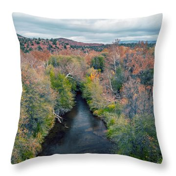 Sedona Throw Pillow