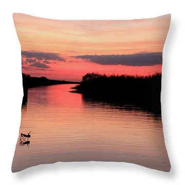 Seeking The Moment Throw Pillow by AR Annahita