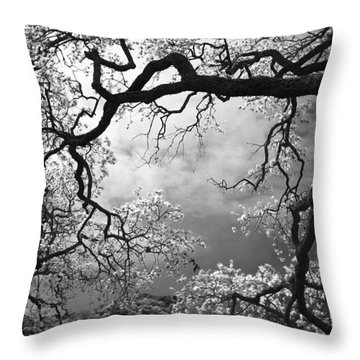 Sheltering Sky  Throw Pillow