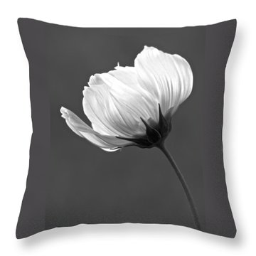 Simply Beautiful In Black And White Throw Pillow