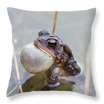 Singing A Love Song Throw Pillow