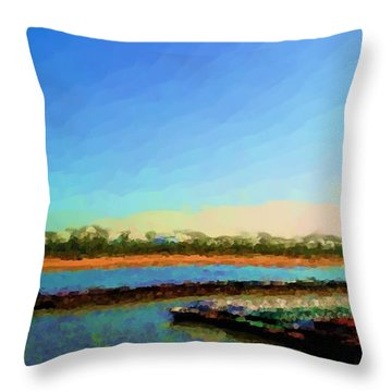 Throw Pillow featuring the photograph Slow And Steady by Kelly Awad