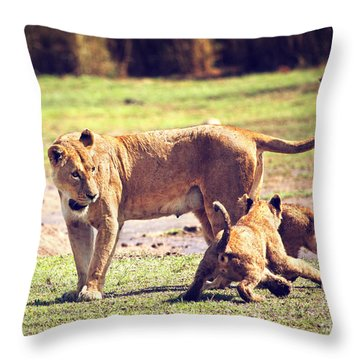 Small Lion Cubs With Mother. Tanzania Throw Pillow by Michal Bednarek
