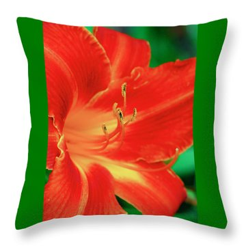 Red, Orange And Yellow Lily Throw Pillow