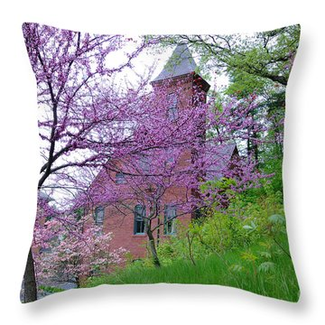 Spring Colors Throw Pillow by Edward Sobuta