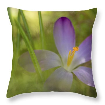 Spring Haze Throw Pillow by Caitlyn  Grasso