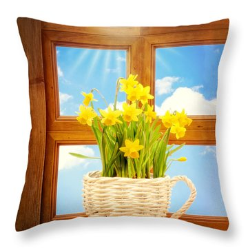 Spring Window Throw Pillow by Amanda Elwell