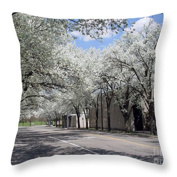 Springtime Corning Ny 1 Throw Pillow