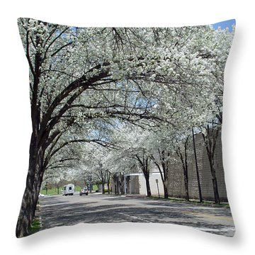 Springtime Corning Ny 3 Throw Pillow