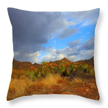 Springtime In Arizona Throw Pillow