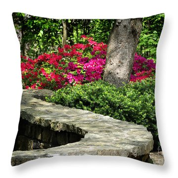Throw Pillow featuring the photograph Stay On The Path by Nava Thompson