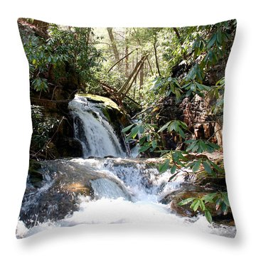 Stoney Creek Throw Pillow by Annlynn Ward
