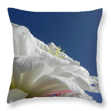 Throw Pillow featuring the photograph Striking Contrast by Deb Halloran