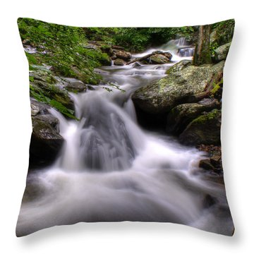 Summer Cascade Throw Pillow by Rebecca Hiatt