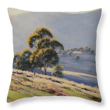 Summer Landscape Throw Pillow