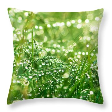 Summer Morning Throw Pillow by Mircea Costina Photography