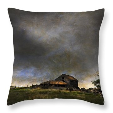 Summer Storm Throw Pillow by Theresa Tahara