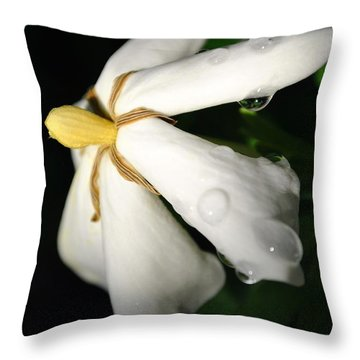 Sun Kissed Gardenia Throw Pillow