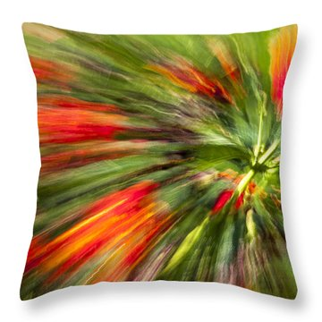 Swirl Of Red Throw Pillow by Jon Glaser