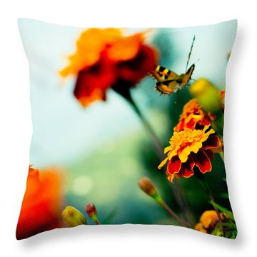 Tagetes And Buterfly Fly Away  Throw Pillow