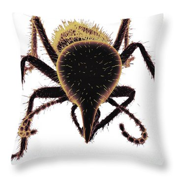 Termite Soldier Throw Pillow by David M. Phillips