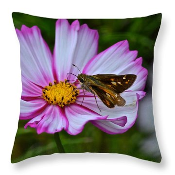 The Beauty Of Nature Throw Pillow by Frozen in Time Fine Art Photography