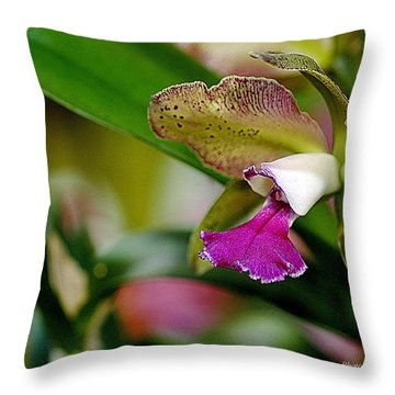 The Corsage Orchid - Cattleya Throw Pillow