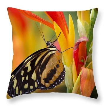 The Postman Butterfly Throw Pillow by Saija  Lehtonen