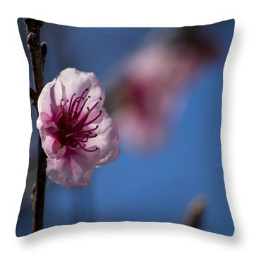 The Spring Is Coming Throw Pillow