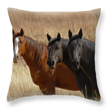 Three Horses Throw Pillow by Ernie Echols