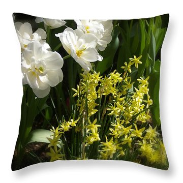 Throw Pillow featuring the photograph Three Of A Kind by Randy Pollard