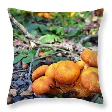 Throw Pillow featuring the photograph Tight Knit by Carlee Ojeda