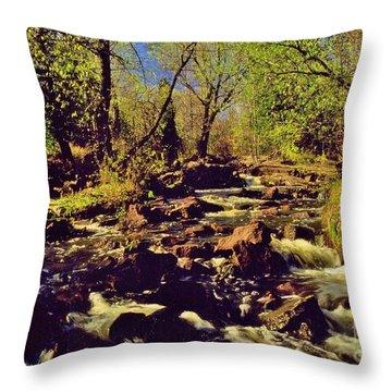Tischer Creek Autumn Throw Pillow by Rory Cubel