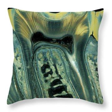 Enamel Throw Pillows