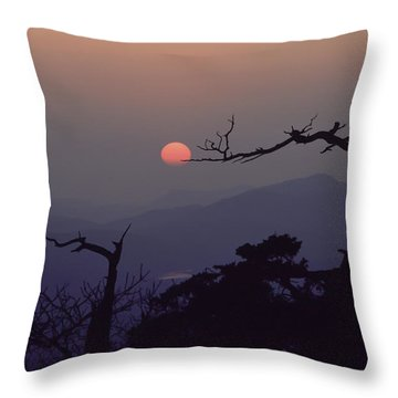 Tree And Sun From Mt Scott Throw Pillow