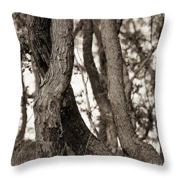 Trees Throw Pillow by Steven Ralser