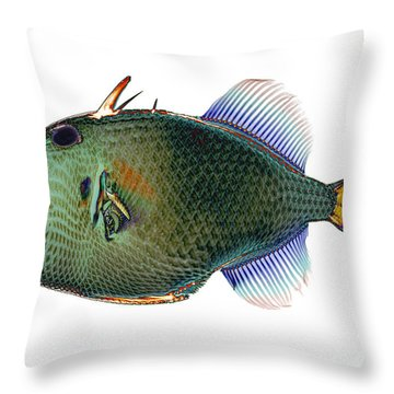Triggerfish X-ray Throw Pillow by D Roberts