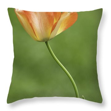 Throw Pillow featuring the photograph Tulip 1 by Ram Vasudev