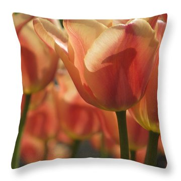 Tulips In Spring Throw Pillow by Alfred Ng