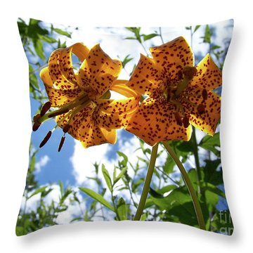 Two Tigers 'n' Sky Throw Pillow