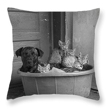Unlikely Friends Throw Pillow
