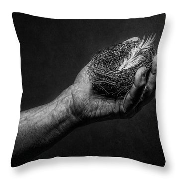 Missing Throw Pillows