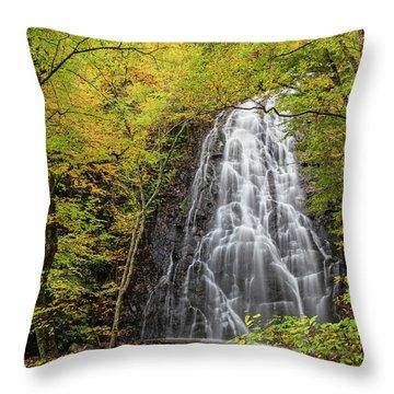 Blue Ridge Parkway Waterfalls Throw Pillows