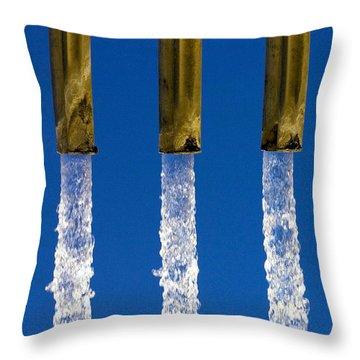 Water Throw Pillow by Fabrizio Troiani